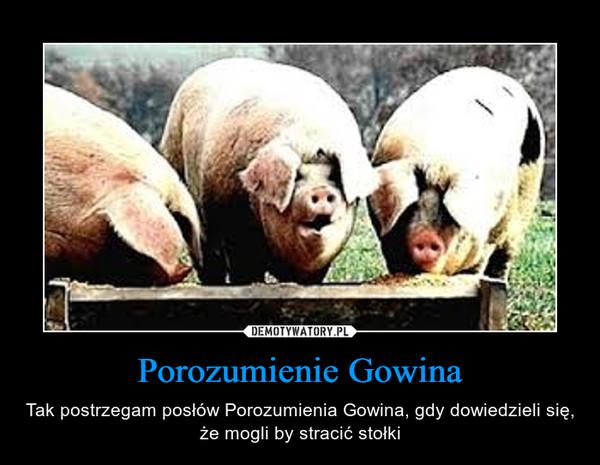 Porozumienie Gowina – Tak postrzegam posłów Porozumienia Gowina, gdy dowiedzieli się, że mogli by stracić stołki