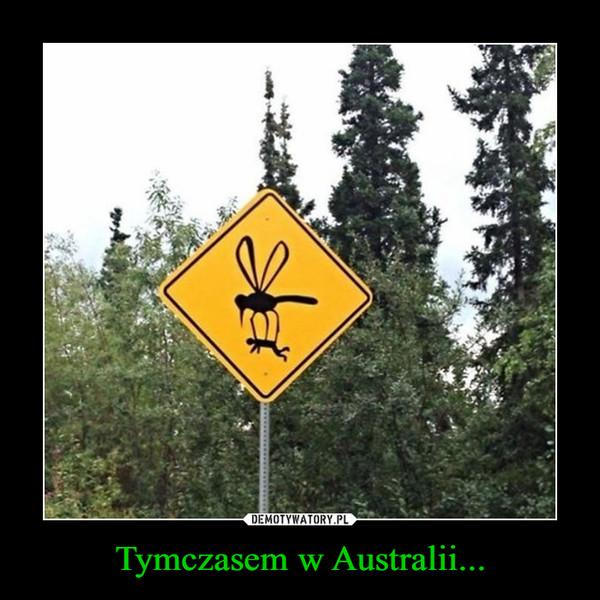 Tymczasem w Australii... –