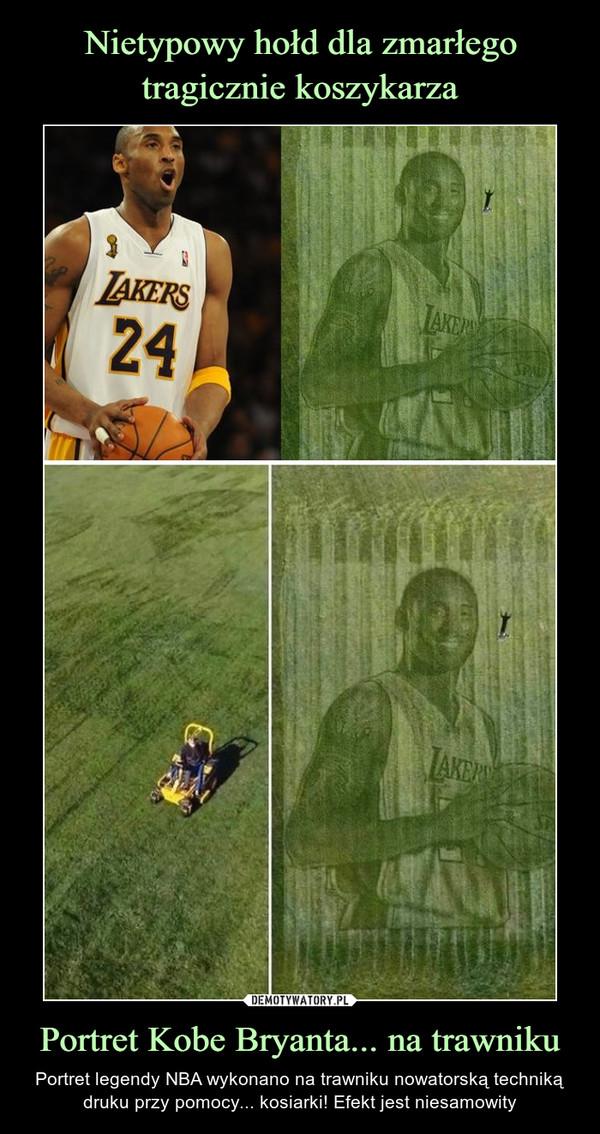 Portret Kobe Bryanta... na trawniku – Portret legendy NBA wykonano na trawniku nowatorską techniką druku przy pomocy... kosiarki! Efekt jest niesamowity