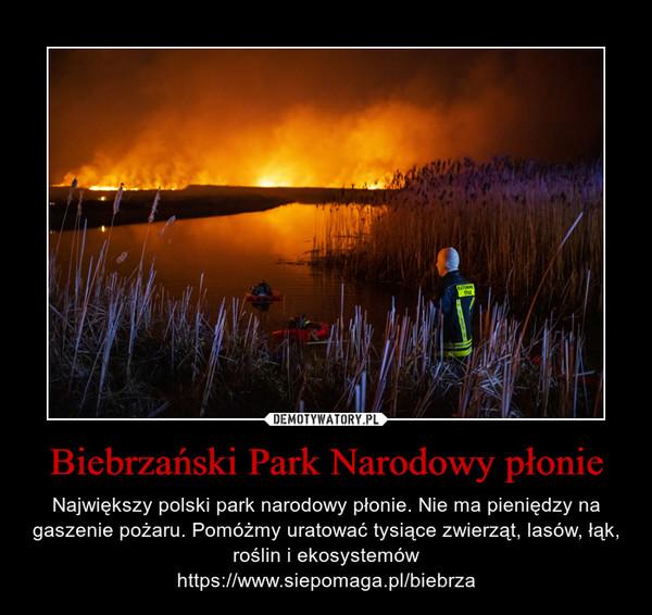 Biebrzański Park Narodowy płonie – Największy polski park narodowy płonie. Nie ma pieniędzy na gaszenie pożaru. Pomóżmy uratować tysiące zwierząt, lasów, łąk, roślin i ekosystemówhttps://www.siepomaga.pl/biebrza