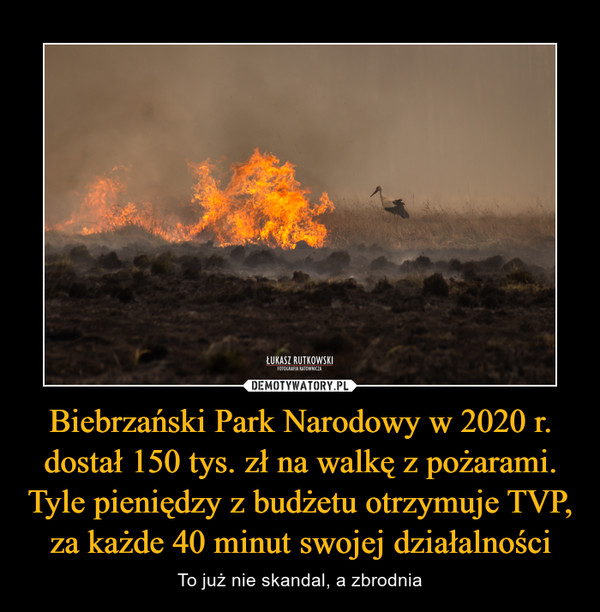 Biebrzański Park Narodowy w 2020 r. dostał 150 tys. zł na walkę z pożarami. Tyle pieniędzy z budżetu otrzymuje TVP, za każde 40 minut swojej działalności – To już nie skandal, a zbrodnia