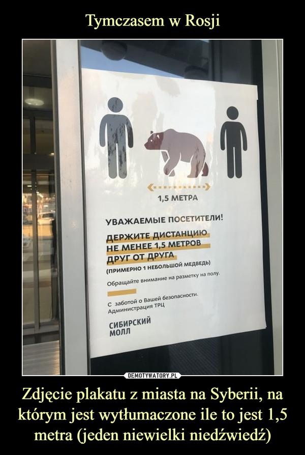Zdjęcie plakatu z miasta na Syberii, na którym jest wytłumaczone ile to jest 1,5 metra (jeden niewielki niedźwiedź) –