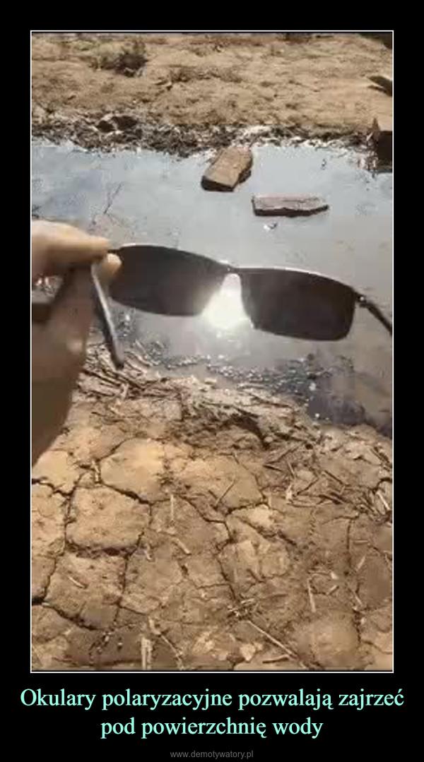Okulary polaryzacyjne pozwalają zajrzeć pod powierzchnię wody –