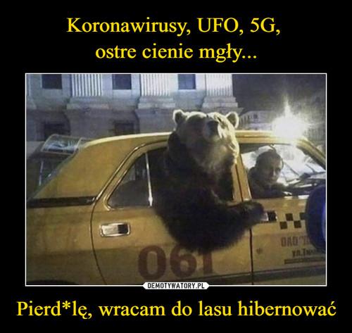 Koronawirusy, UFO, 5G,  ostre cienie mgły... Pierd*lę, wracam do lasu hibernować