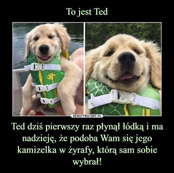Ted dziś pierwszy raz płynął łódką i ma nadzieję, że podoba Wam się jego kamizelka w żyrafy, którą sam sobie wybrał! –