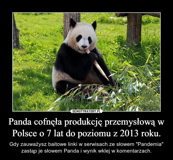 Panda cofnęła produkcję przemysłową w Polsce o 7 lat do poziomu z 2013 roku.