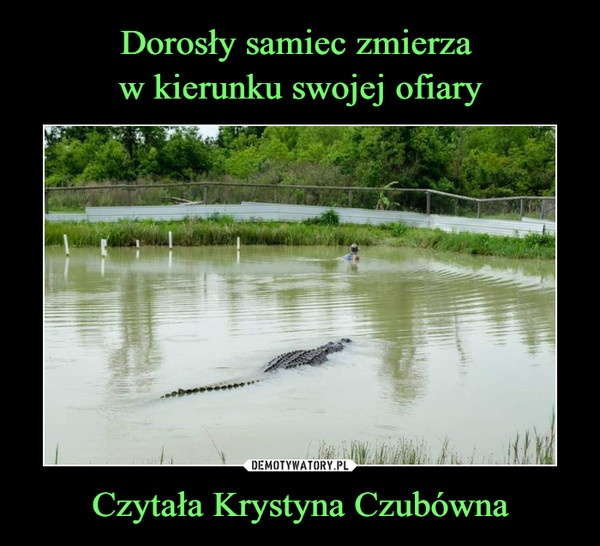 Czytała Krystyna Czubówna –