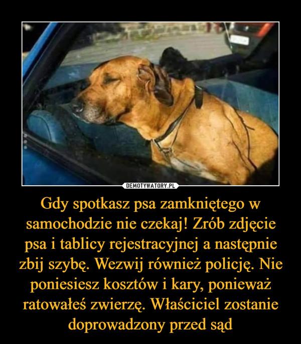Gdy spotkasz psa zamkniętego w samochodzie nie czekaj! Zrób zdjęcie psa i tablicy rejestracyjnej a następnie zbij szybę. Wezwij również policję. Nie poniesiesz kosztów i kary, ponieważ ratowałeś zwierzę. Właściciel zostanie doprowadzony przed sąd –