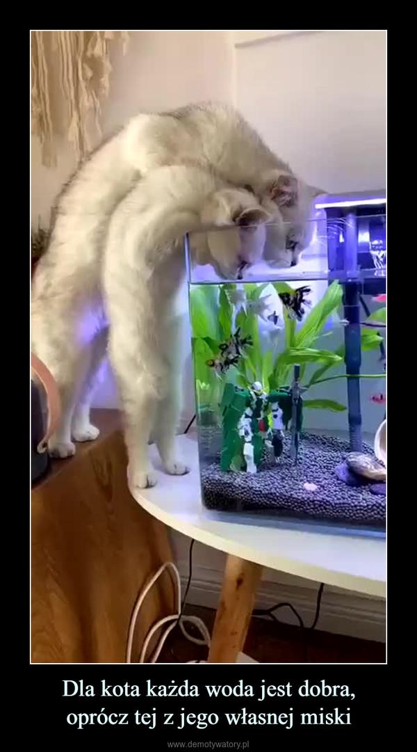 Dla kota każda woda jest dobra,oprócz tej z jego własnej miski –