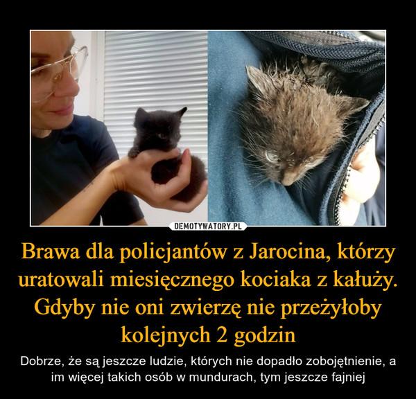 Brawa dla policjantów z Jarocina, którzy uratowali miesięcznego kociaka z kałuży. Gdyby nie oni zwierzę nie przeżyłoby kolejnych 2 godzin – Dobrze, że są jeszcze ludzie, których nie dopadło zobojętnienie, a im więcej takich osób w mundurach, tym jeszcze fajniej