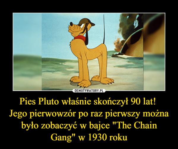 """Pies Pluto właśnie skończył 90 lat! Jego pierwowzór po raz pierwszy można było zobaczyć w bajce """"The Chain Gang"""" w 1930 roku –"""