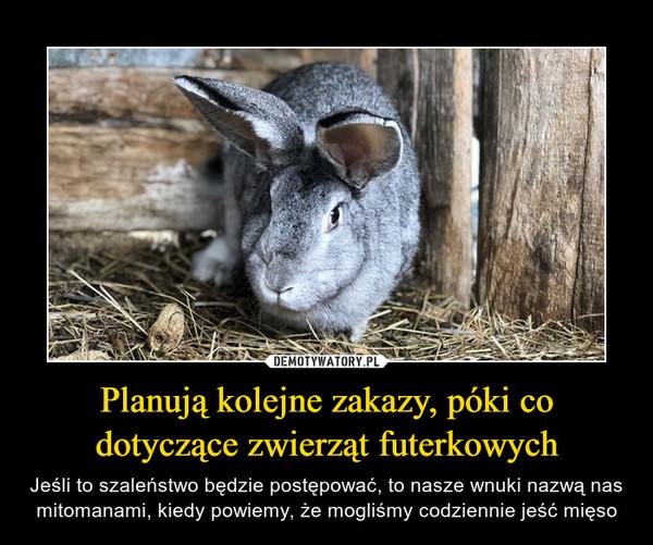 Planują kolejne zakazy, póki co dotyczące zwierząt futerkowych – Jeśli to szaleństwo będzie postępować, to nasze wnuki nazwą nas mitomanami, kiedy powiemy, że mogliśmy codziennie jeść mięso