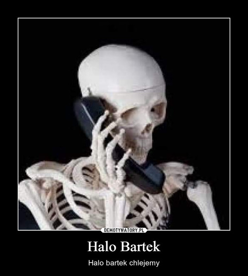 Halo Bartek