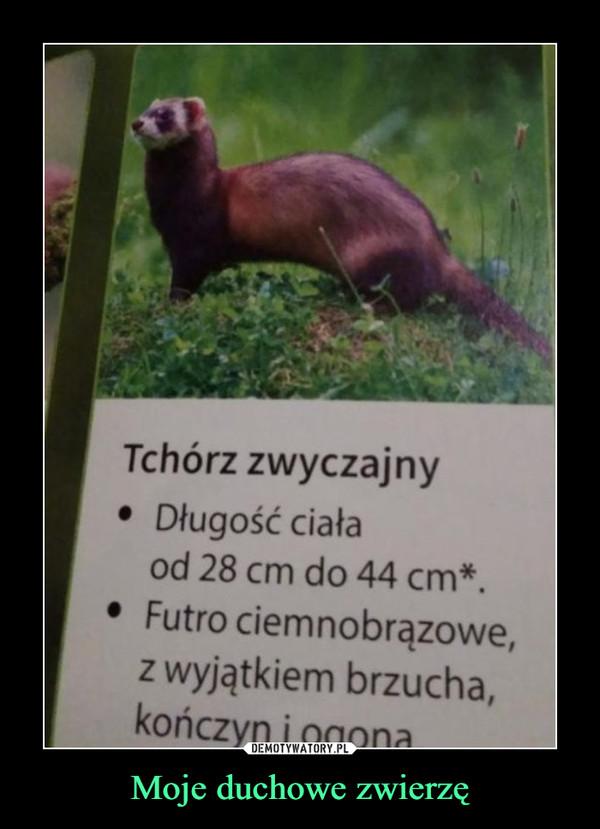 Moje duchowe zwierzę –  Tchórz zwyczajnyDługość ciałaod 28 cm do 44 cm*.• Futro ciemnobrązowe,z wjątkiem brzucha,kończyn i ogona