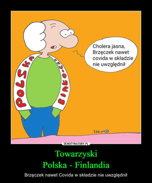Towarzyski Polska - Finlandia