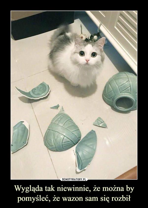 Wygląda tak niewinnie, że można by pomyśleć, że wazon sam się rozbił –