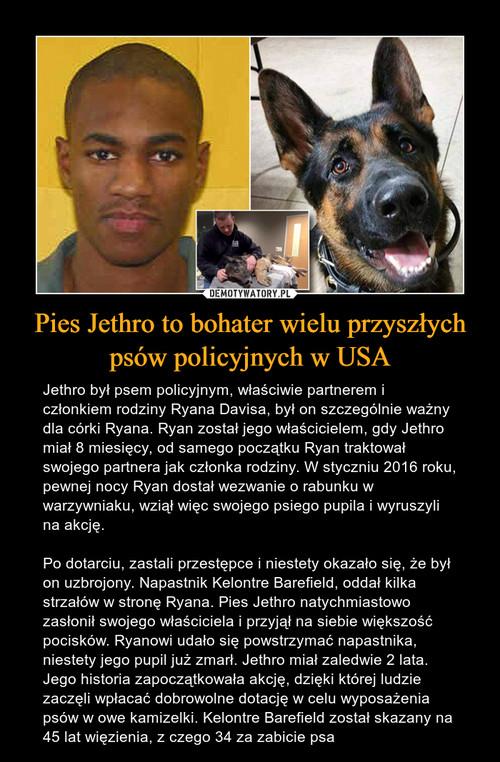 Pies Jethro to bohater wielu przyszłych psów policyjnych w USA