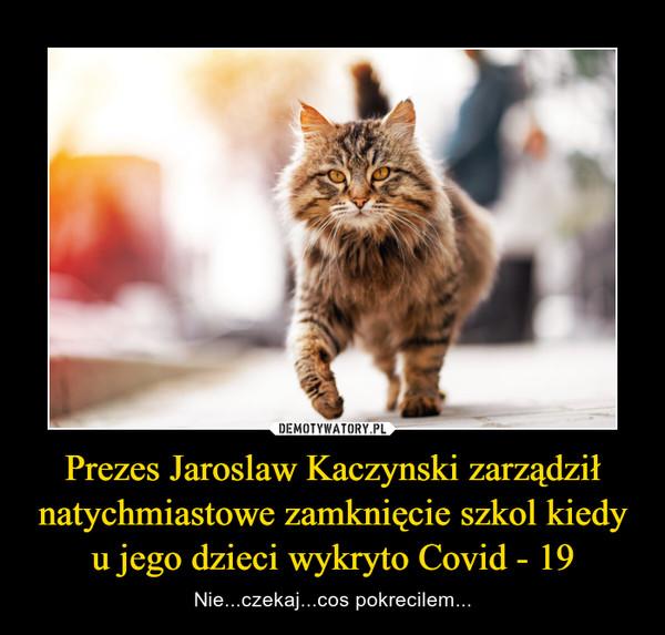 Prezes Jaroslaw Kaczynski zarządził natychmiastowe zamknięcie szkol kiedy u jego dzieci wykryto Covid - 19 – Nie...czekaj...cos pokrecilem...