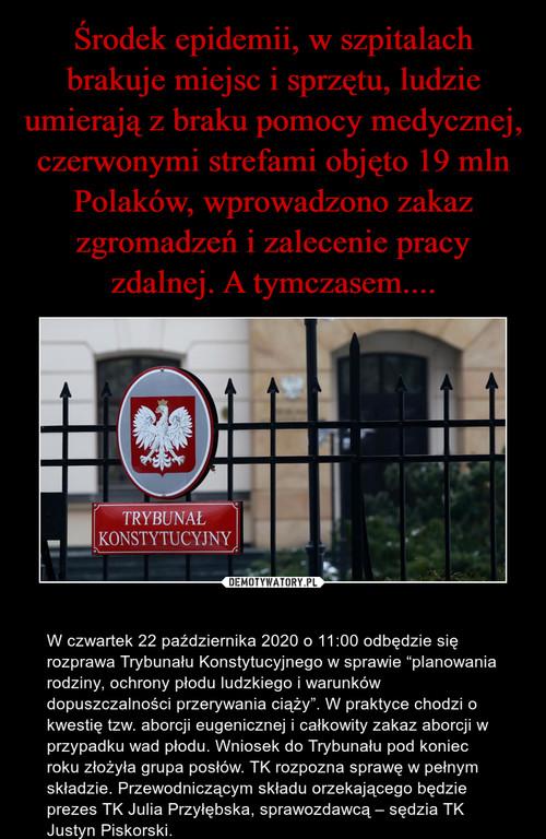 Środek epidemii, w szpitalach brakuje miejsc i sprzętu, ludzie umierają z braku pomocy medycznej, czerwonymi strefami objęto 19 mln Polaków, wprowadzono zakaz zgromadzeń i zalecenie pracy zdalnej. A tymczasem....