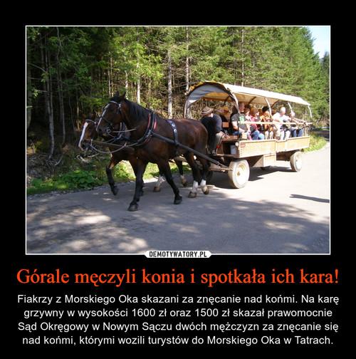 Górale męczyli konia i spotkała ich kara!