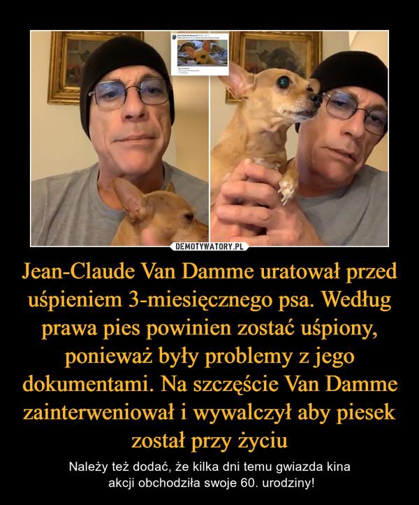 Jean-Claude Van Damme uratował przed uśpieniem 3-miesięcznego psa. Według prawa pies powinien zostać uśpiony, ponieważ były problemy z jego dokumentami. Na szczęście Van Damme zainterweniował i wywalczył aby piesek został przy życiu – Należy też dodać, że kilka dni temu gwiazda kina akcji obchodziła swoje 60. urodziny!