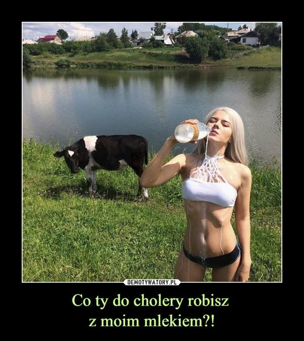 Co ty do cholery robisz z moim mlekiem?! –