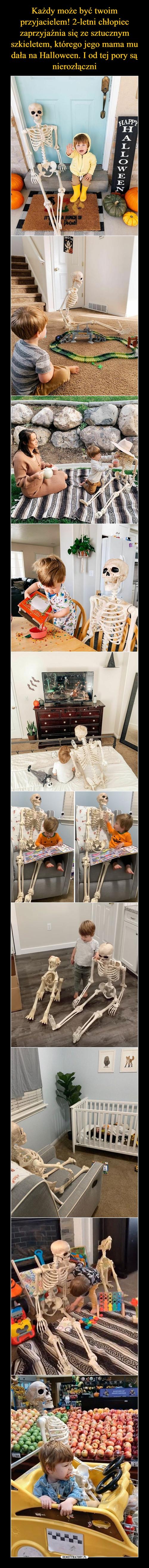 Każdy może być twoim przyjacielem! 2-letni chłopiec zaprzyjaźnia się ze sztucznym szkieletem, którego jego mama mu dała na Halloween. I od tej pory są nierozłączni
