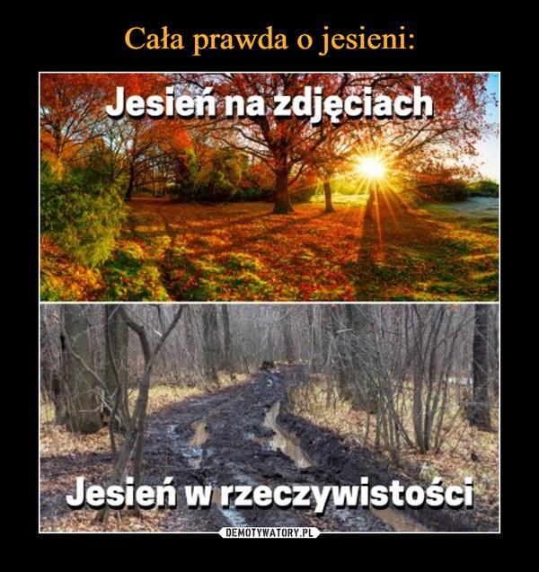 [Obrazek: 1604661967_umbhdx_600.jpg]