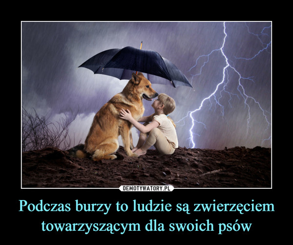 Podczas burzy to ludzie są zwierzęciem towarzyszącym dla swoich psów –