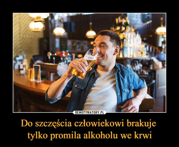 Do szczęścia człowiekowi brakuje tylko promila alkoholu we krwi –