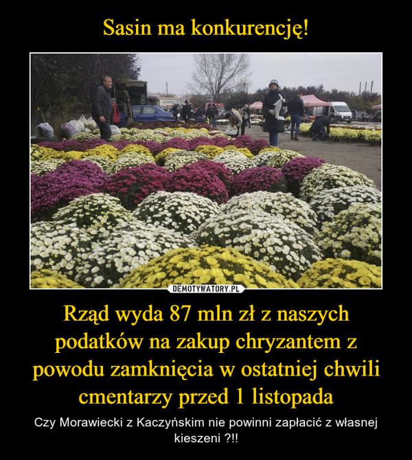 Rząd wyda 87 mln zł z naszych podatków na zakup chryzantem z powodu zamknięcia w ostatniej chwili cmentarzy przed 1 listopada – Czy Morawiecki z Kaczyńskim nie powinni zapłacić z własnej kieszeni ?!!