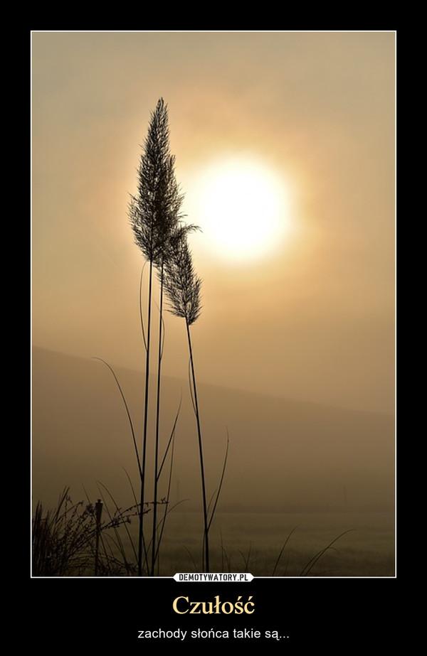 Czułość – zachody słońca takie są...