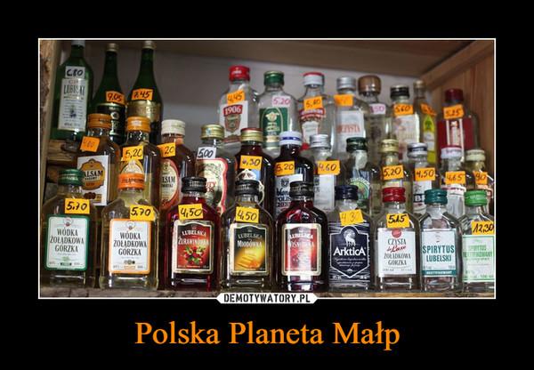 Polska Planeta Małp –