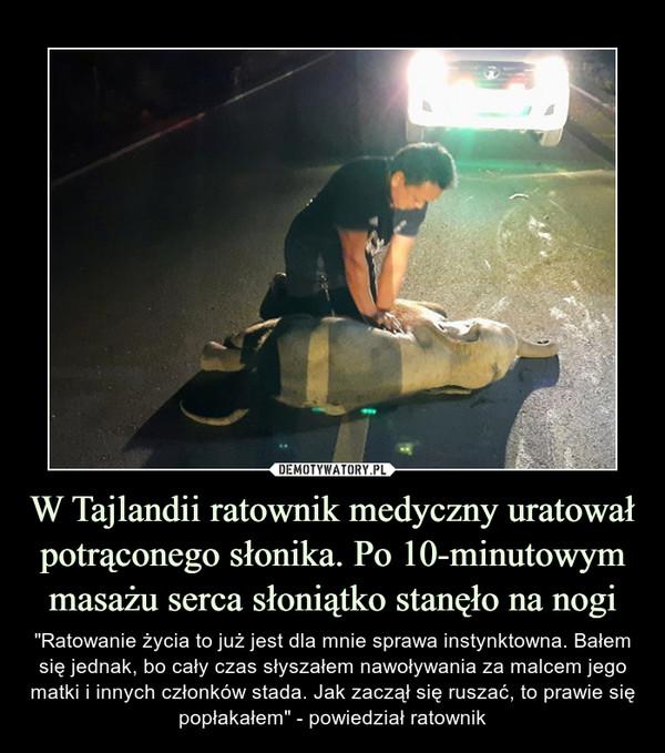"""W Tajlandii ratownik medyczny uratował potrąconego słonika. Po 10-minutowym masażu serca słoniątko stanęło na nogi – """"Ratowanie życia to już jest dla mnie sprawa instynktowna. Bałem się jednak, bo cały czas słyszałem nawoływania za malcem jego matki i innych członków stada. Jak zaczął się ruszać, to prawie się popłakałem"""" - powiedział ratownik"""