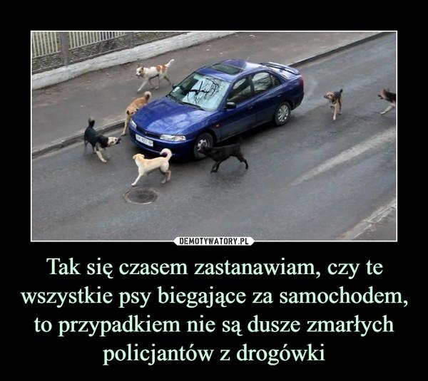 Tak się czasem zastanawiam, czy te wszystkie psy biegające za samochodem, to przypadkiem nie są dusze zmarłych policjantów z drogówki –