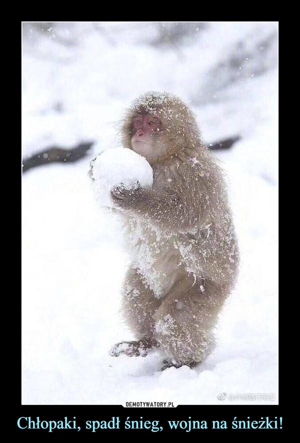 Chłopaki, spadł śnieg, wojna na śnieżki! –