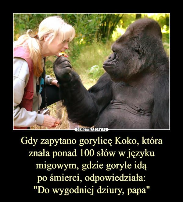 """Gdy zapytano gorylicę Koko, któraznała ponad 100 słów w języku migowym, gdzie goryle idąpo śmierci, odpowiedziała:""""Do wygodniej dziury, papa"""" –"""