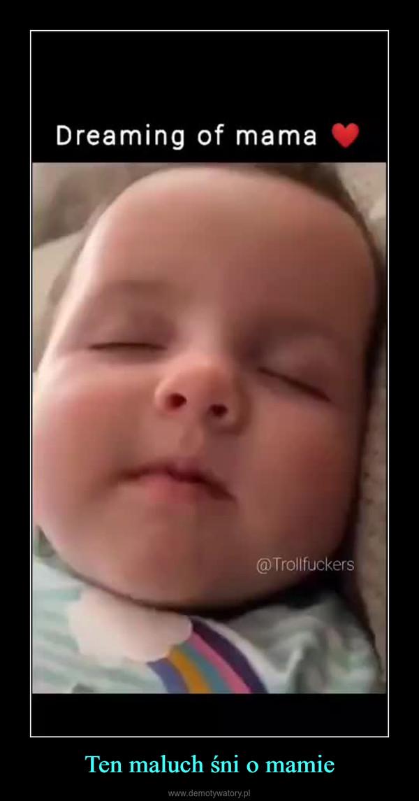 Ten maluch śni o mamie –