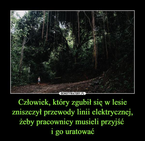 Człowiek, który zgubił się w lesie zniszczył przewody linii elektrycznej, żeby pracownicy musieli przyjść i go uratować –
