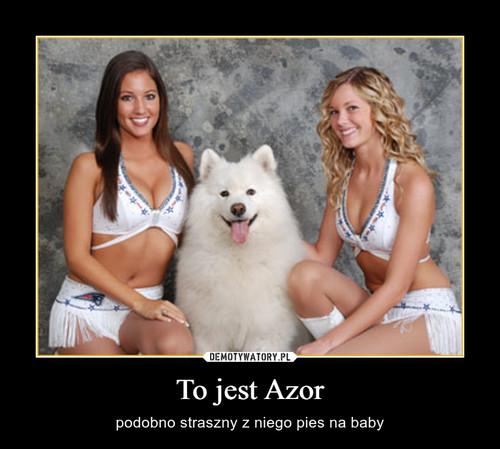 To jest Azor