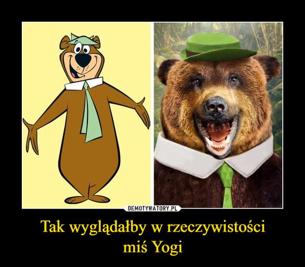 Tak wyglądałby w rzeczywistościmiś Yogi –