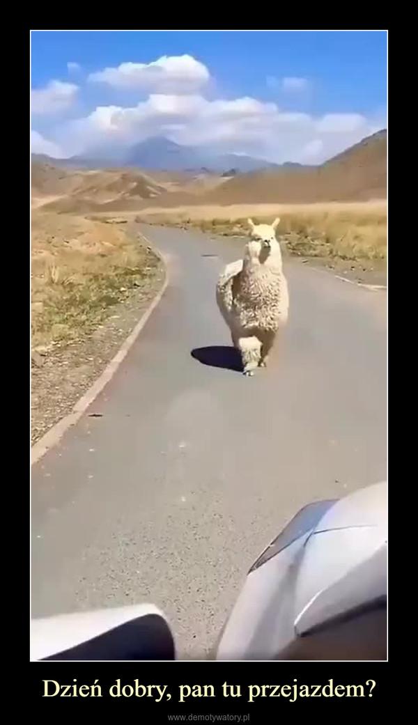 Dzień dobry, pan tu przejazdem? –