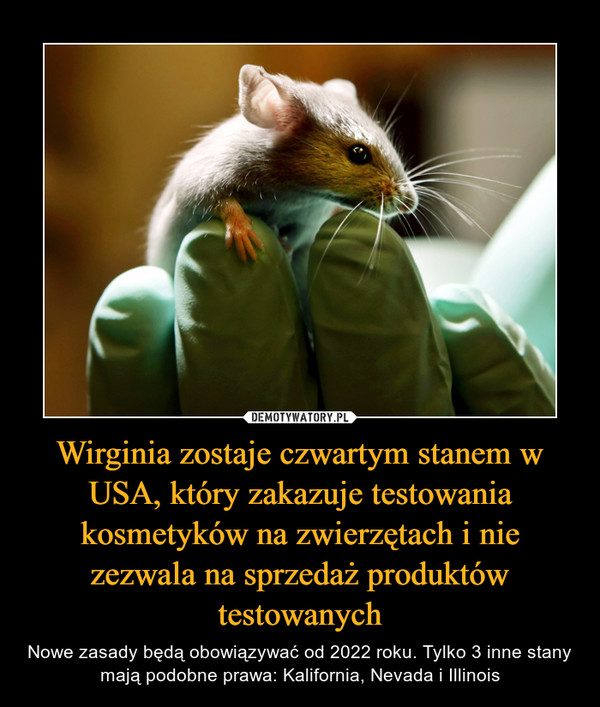 Wirginia zostaje czwartym stanem w USA, który zakazuje testowania kosmetyków na zwierzętach i nie zezwala na sprzedaż produktów testowanych