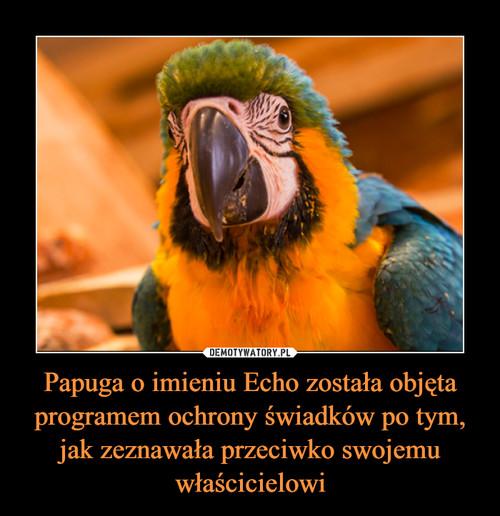 Papuga o imieniu Echo została objęta programem ochrony świadków po tym, jak zeznawała przeciwko swojemu właścicielowi