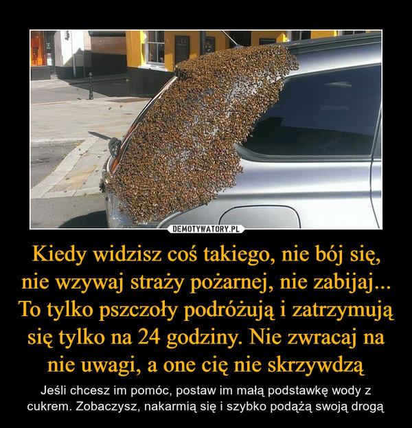 Kiedy widzisz coś takiego, nie bój się, nie wzywaj straży pożarnej, nie zabijaj... To tylko pszczoły podróżują i zatrzymują się tylko na 24 godziny. Nie zwracaj na nie uwagi, a one cię nie skrzywdzą – Jeśli chcesz im pomóc, postaw im małą podstawkę wody z cukrem. Zobaczysz, nakarmią się i szybko podążą swoją drogą