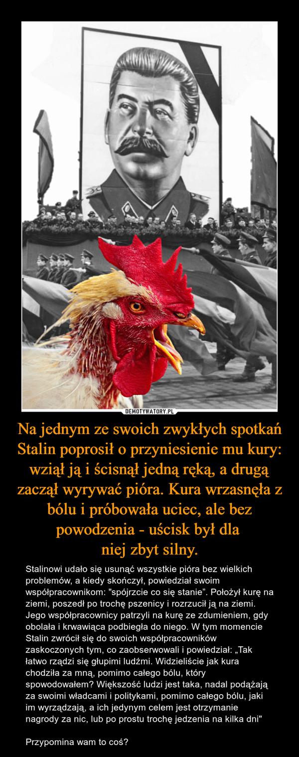 """Na jednym ze swoich zwykłych spotkań Stalin poprosił o przyniesienie mu kury: wziął ją i ścisnął jedną ręką, a drugą zaczął wyrywać pióra. Kura wrzasnęła z bólu i próbowała uciec, ale bez powodzenia - uścisk był dla niej zbyt silny. – Stalinowi udało się usunąć wszystkie pióra bez wielkich problemów, a kiedy skończył, powiedział swoim współpracownikom: """"spójrzcie co się stanie"""". Położył kurę na ziemi, poszedł po trochę pszenicy i rozrzucił ją na ziemi. Jego współpracownicy patrzyli na kurę ze zdumieniem, gdy obolała i krwawiąca podbiegła do niego. W tym momencie Stalin zwrócił się do swoich współpracowników zaskoczonych tym, co zaobserwowali i powiedział: """"Tak łatwo rządzi się głupimi ludźmi. Widzieliście jak kura chodziła za mną, pomimo całego bólu, który spowodowałem? Większość ludzi jest taka, nadal podążają za swoimi władcami i politykami, pomimo całego bólu, jaki im wyrządzają, a ich jedynym celem jest otrzymanie nagrody za nic, lub po prostu trochę jedzenia na kilka dni""""Przypomina wam to coś?"""