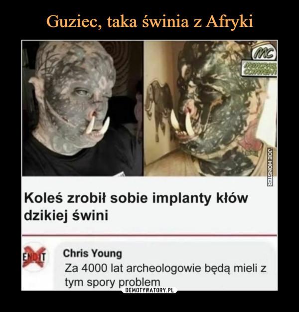 –  Koleś zrobił sobie implanty kłówdzikiej świniChris YoungZa 4000 lat archeologowie będą mieli ztym spory problem