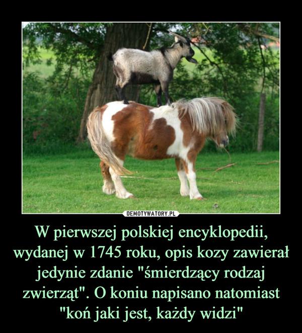 """W pierwszej polskiej encyklopedii, wydanej w 1745 roku, opis kozy zawierał jedynie zdanie """"śmierdzący rodzaj zwierząt"""". O koniu napisano natomiast """"koń jaki jest, każdy widzi"""" –"""