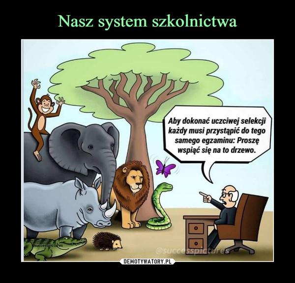 –  Aby dokonać uczciwej selekcji każdy musi przystąpić do tego samego egzaminu: Proszę wspiąć się na to drzewo.