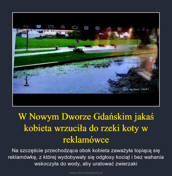 W Nowym Dworze Gdańskim jakaś kobieta wrzuciła do rzeki koty w reklamówce – Na szczęście przechodząca obok kobieta zaważyła topiącą się reklamówkę, z której wydobywały się odgłosy kociąt i bez wahania wskoczyła do wody, aby uratować zwierzaki